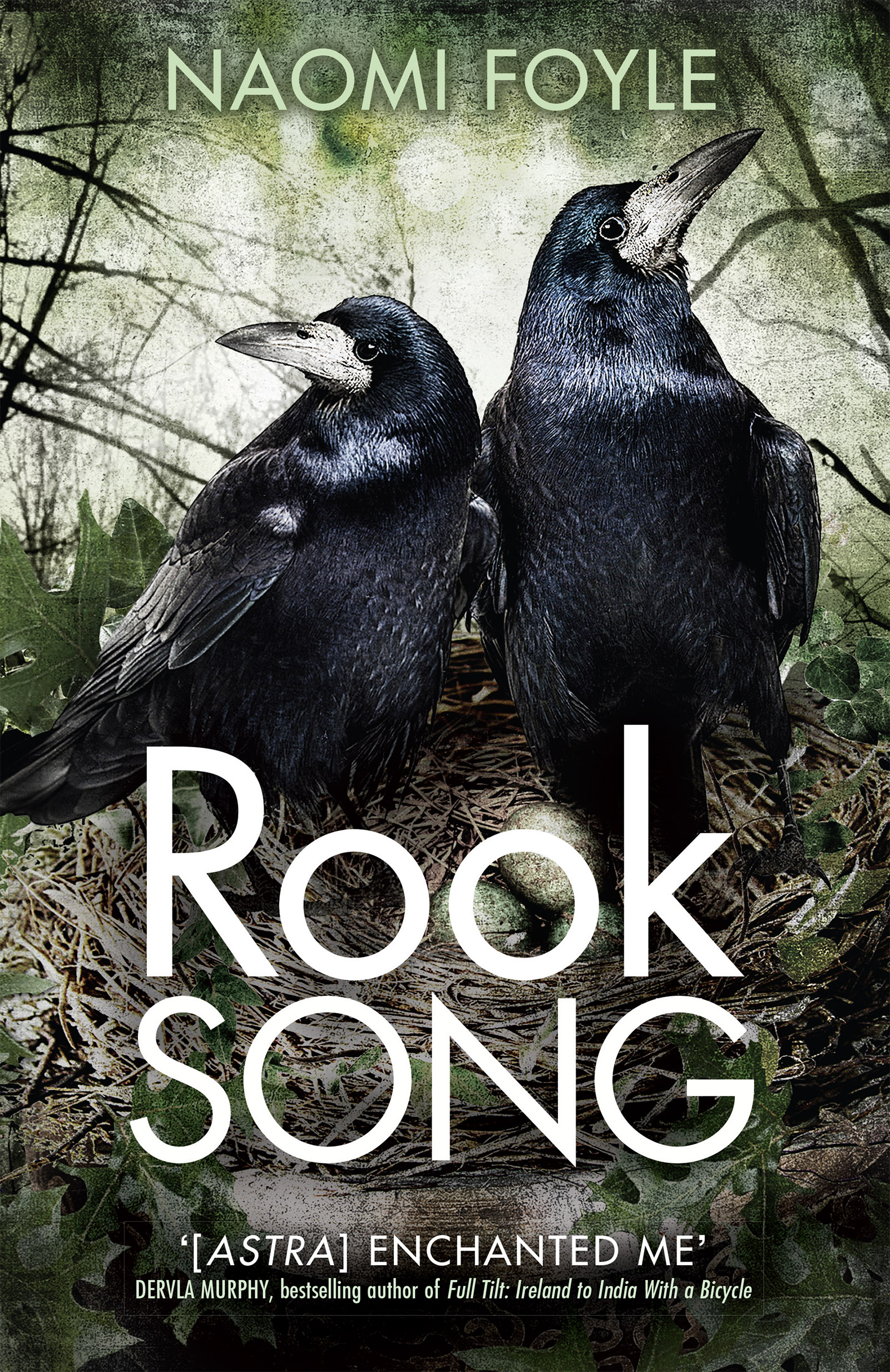 Cover of Rook Song by Naomi Foyle